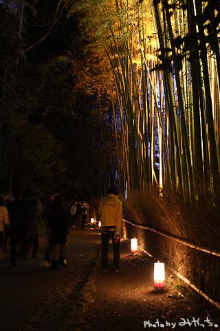 京都嵐山花灯路2009